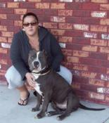 Bully Proof Kennels Florida