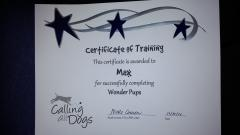 Max completed a 3rd portion of his Service Dog training