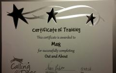 Max completed a second portion of Service Dog training.