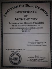Max's Certificate